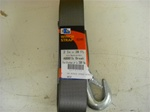 HEAVY DUTY WINCH STRAP W/HOOK 20'
